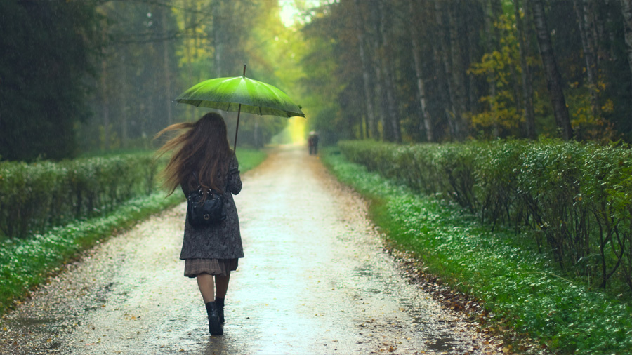 "El ""olor a tierra mojada"" después de la lluvia, se debe a una bacteria"