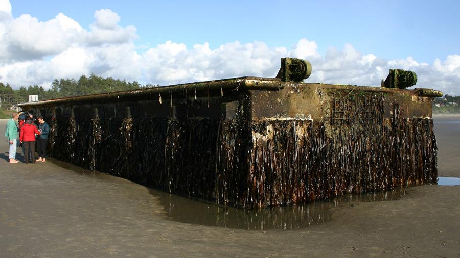 Un 'arca de Noé' de residuos cruzó el Pacífico tras el tsunami japonés