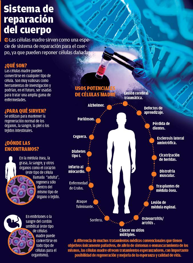 Sistema de reparación del cuerpo