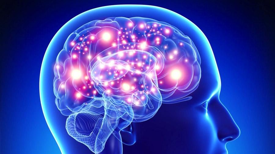 Ya se puede medir la sabiduría a partir de la actividad cerebral