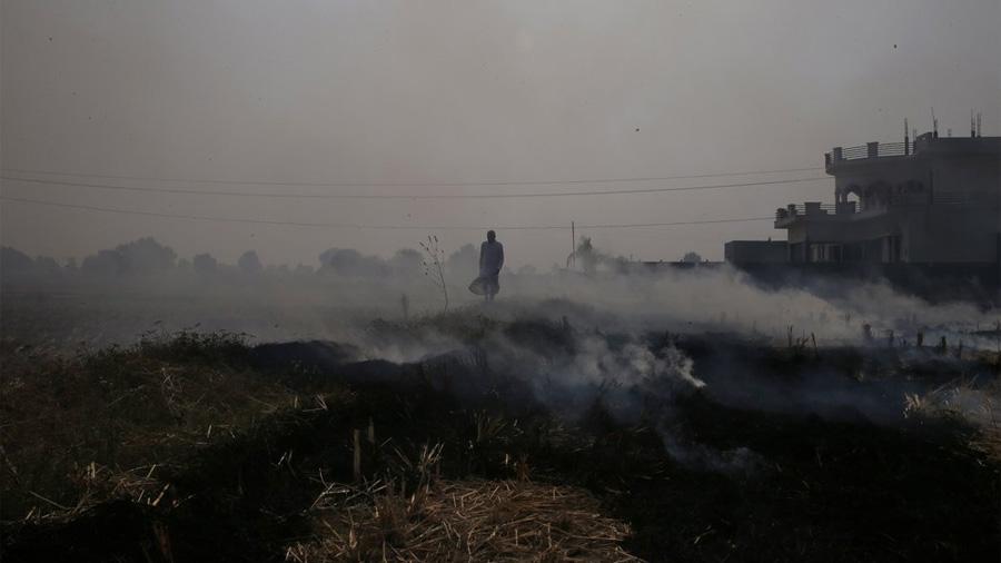 Los efectos mortíferos de la contaminación en el aire
