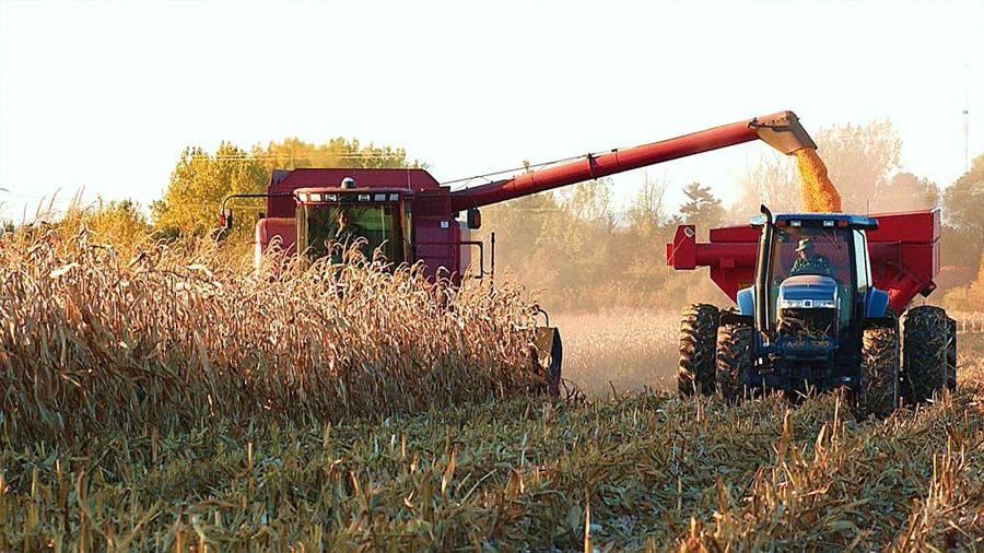 El ascenso de la temperatura amenaza la producción agrícola mundial