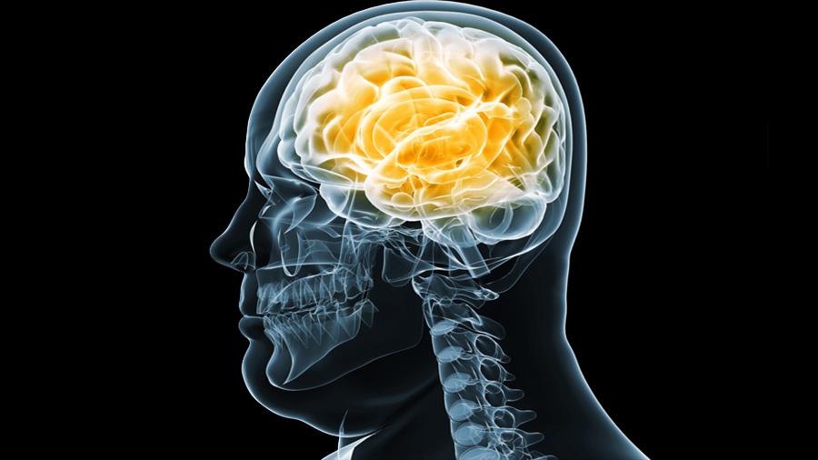 Hallada una razón por la que la obesidad y la diabetes aumentan el riesgo de alzhéimer