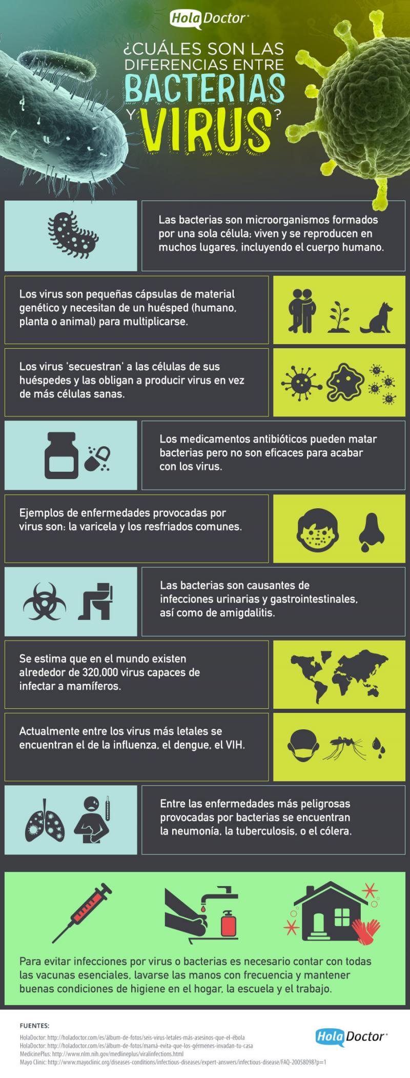 ¿Cuales son las diferencias entre bacterias y virus?