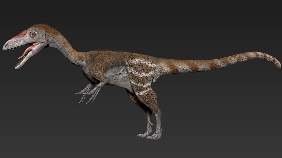 'El zorro' de los dinosaurios Sinosauropteryx lucía antifaz