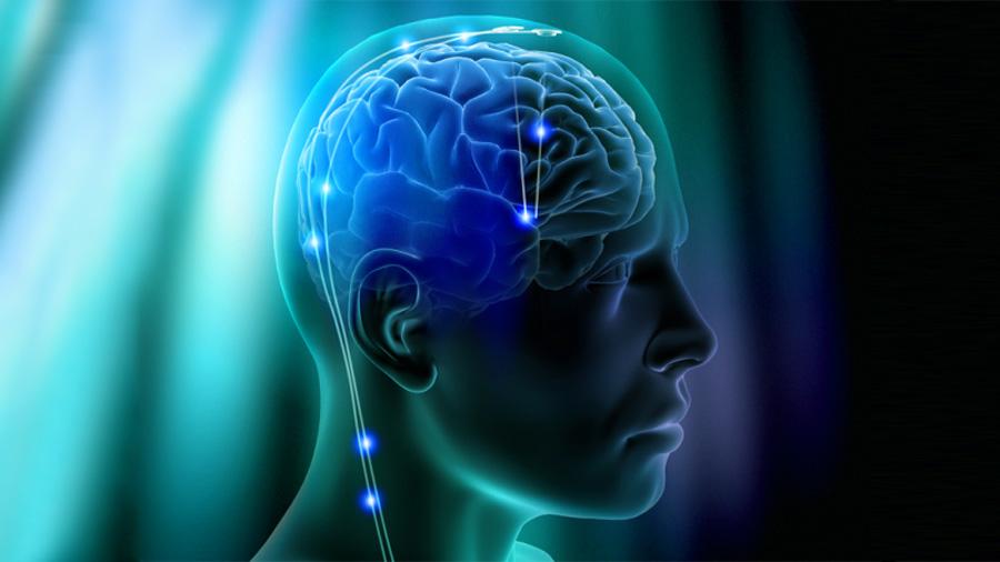 Descubren cómo mejorar la memoria con electroestímulos en una región específica del cerebro
