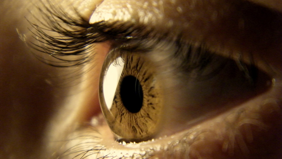 La desintegración de señales visuales impide que veamos lo que estamos mirando