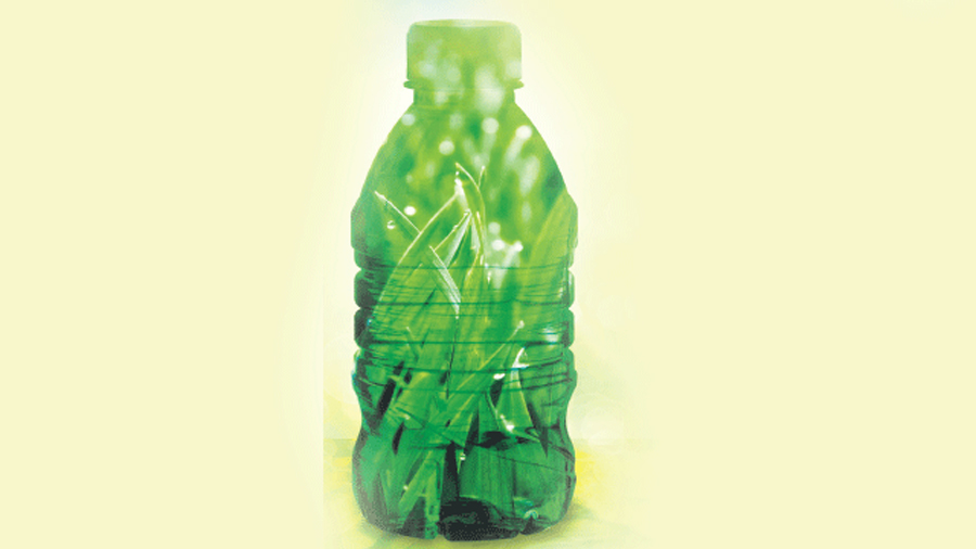 Cianobacterias y luz solar naturalizan los plásticos biodegradables