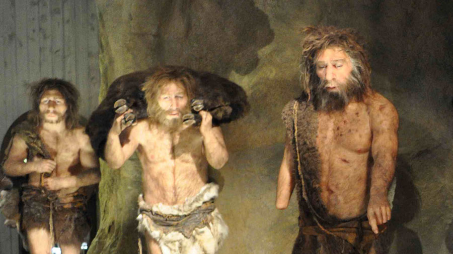 Migración humana condenó a la extinción a los Neandertales