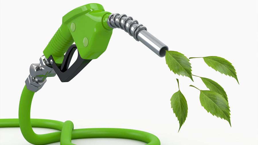 Biocombustibles: ¿promesa, utopía o realidad?
