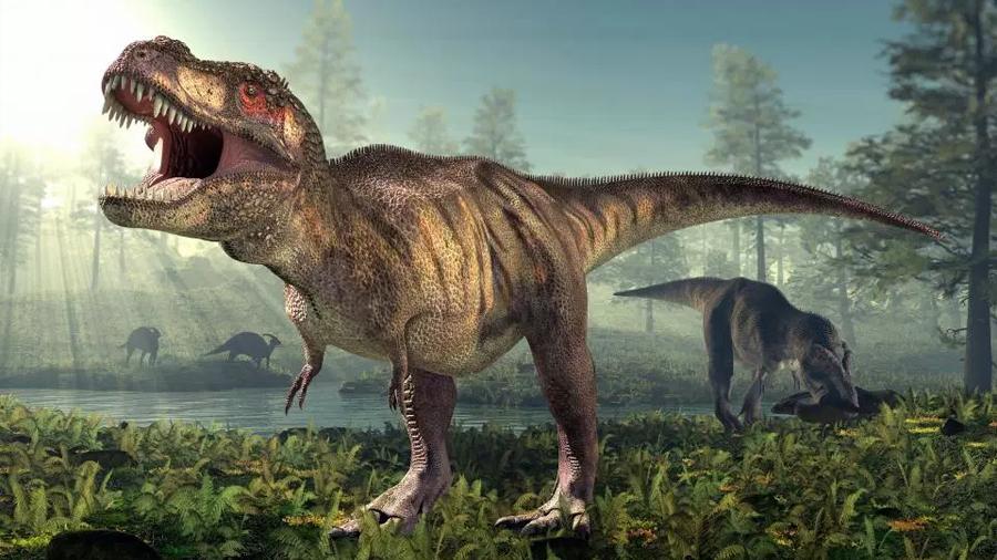 El mayor mito sobre el T-rex puede ser falso: sus pequeños brazos sí tenían un cometido, y era salvaje y sangriento