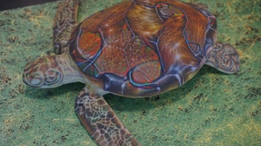 La inteligencia artificial de Google confunde una tortuga con un rifle
