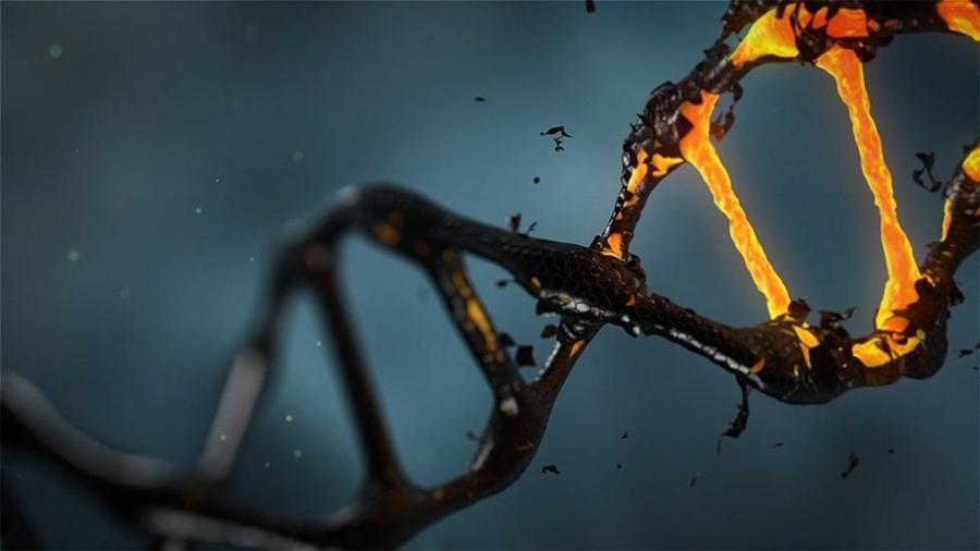 """Logran describir la """"materia oscura"""" del ADN con un nuevo método de codificación"""
