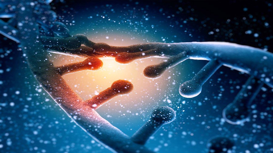 Un nuevo método acelera el mapeo de genes en la 'materia oscura' del ADN