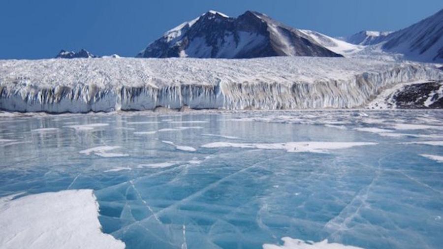 Encuentran un bosque fósil en las montañas de la Antártida