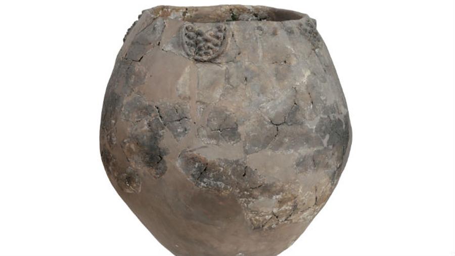 El hombre preparaba vino en precarias condiciones hace más de 8 mil años
