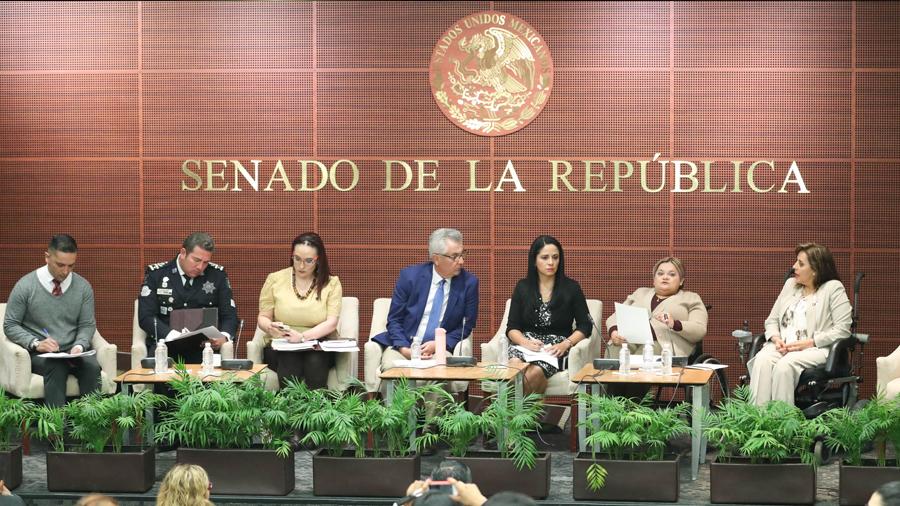 Necesario incluir los derechos humanos de la comunidad sorda del país en la legislación, plantean en el Senado