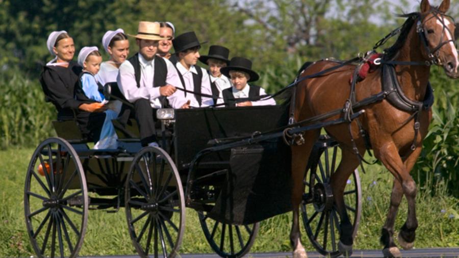 Encuentran la fuente de la juventud está en una comunidad Amish de EU