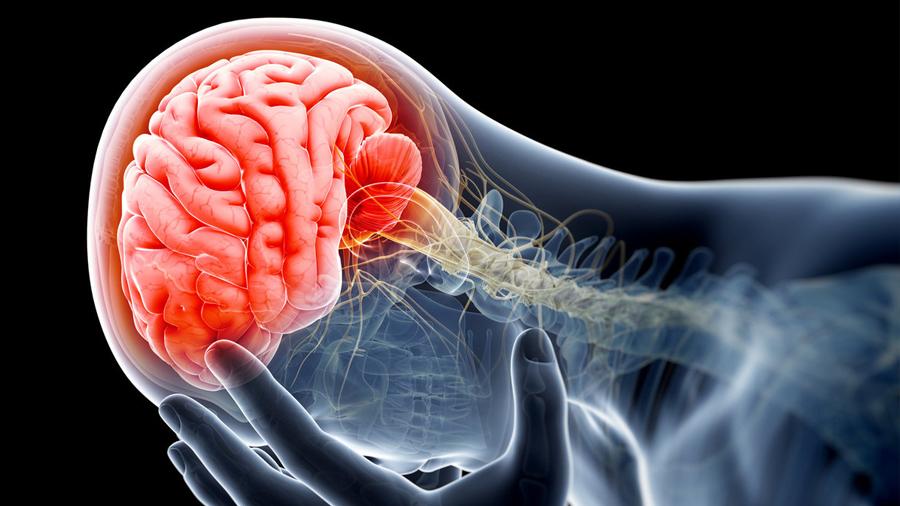 Nueva técnica por escaneo cerebral es capaz de detectar el deseo de suicidarse