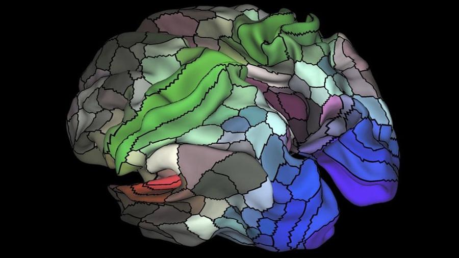 Neurocientíficos logran construir el primer mapa de las memorias en el cerebro