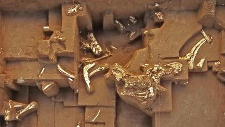 """Un estudio sobre homínidos de un millón de años, en duda por utilizar huesos """"robados"""""""