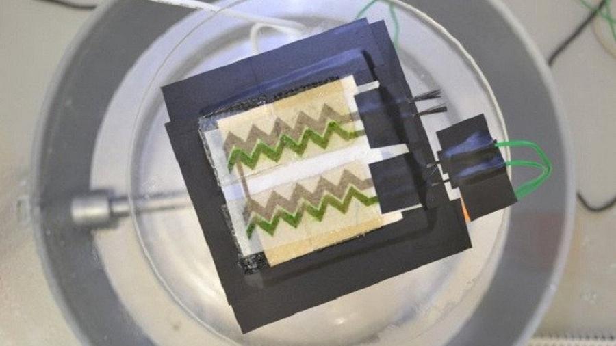 Crean papel pintado solar para cosechar energía desde las paredes