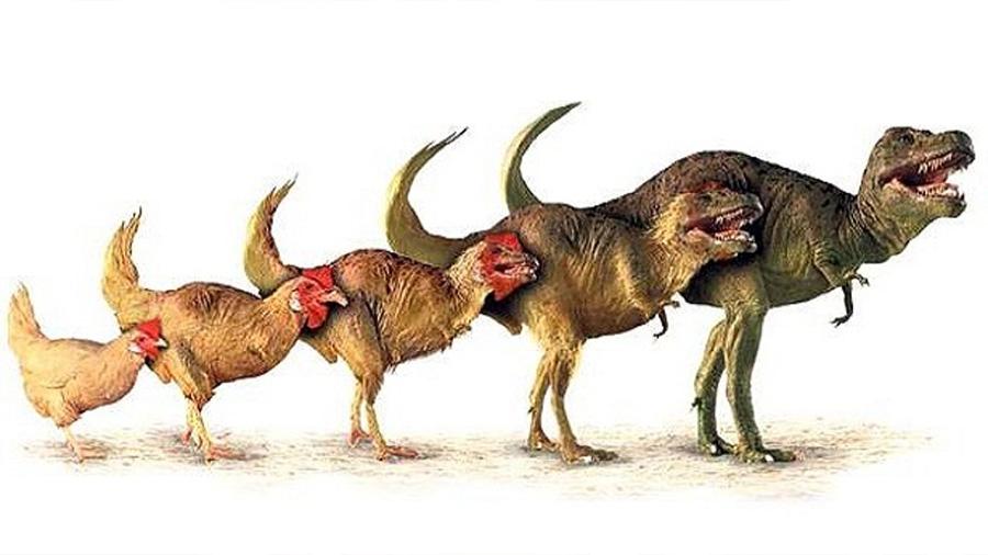 La clonación de Elvis y la vuelta a la vida del mamut y el 'pollosaurio'
