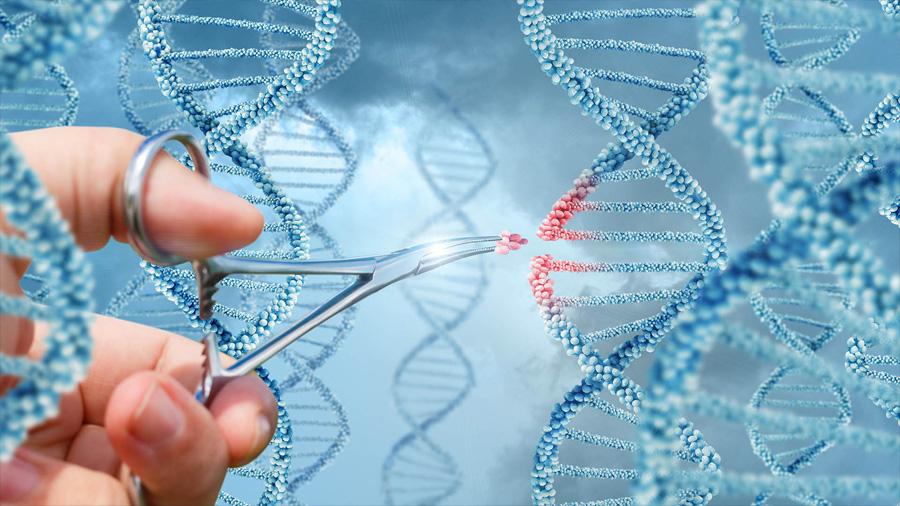 Avance científico: inyectan ADN editado en un paciente para curarle una enfermedad mortal