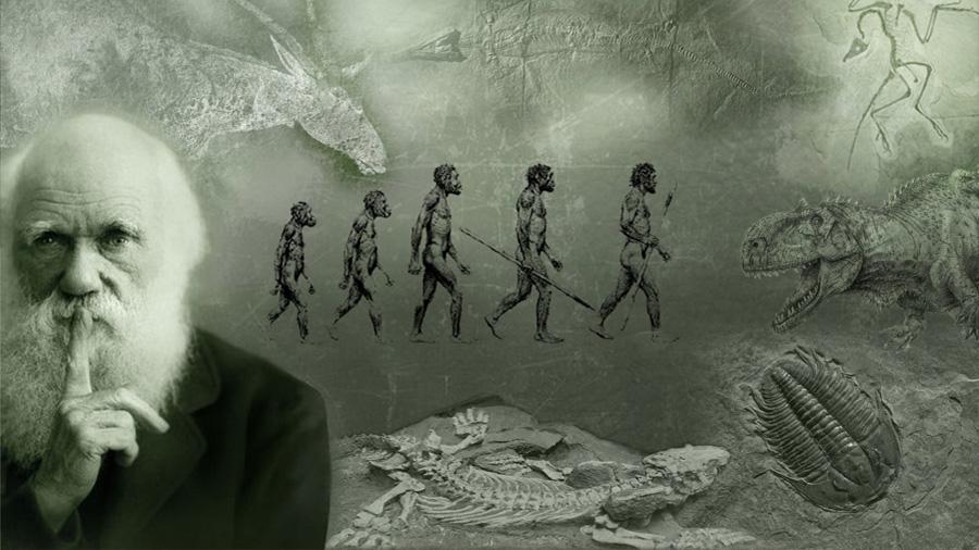 """Subastarán """"El origen de las especies"""" con anotaciones hechas a mano de Darwin"""