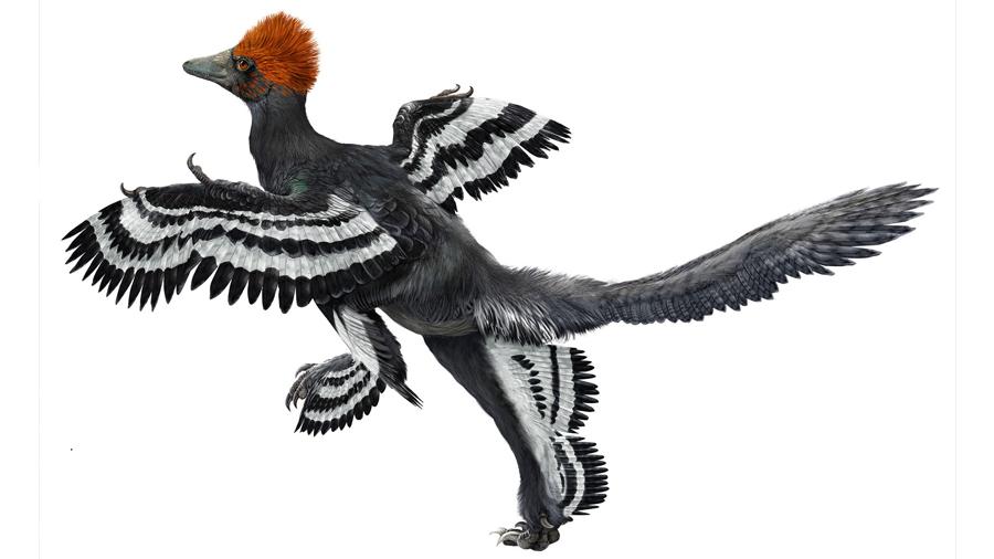 Esta es la representación más exacta de un dinosaurio hasta la fecha