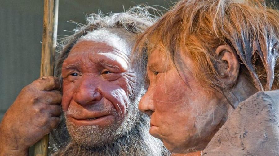 El tórax de los neandertales estaba adaptado para consumir más oxígeno que el del Homo sapiens