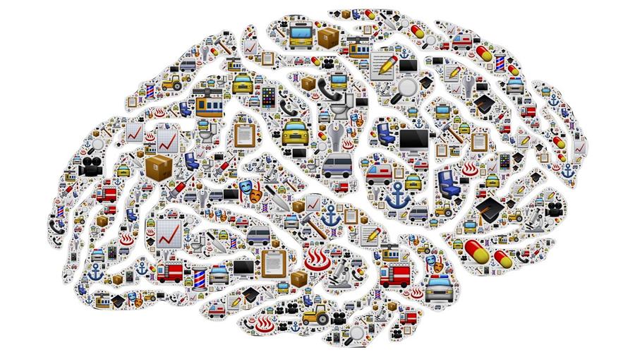Descubren cómo el cerebro procesa la información que nos interesa