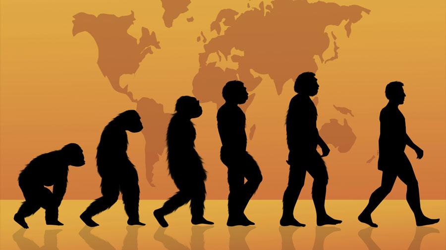 Investigación demuestra que los humanos hemos llegado al máximo en altura, esperanza de vida y capacidades físicas