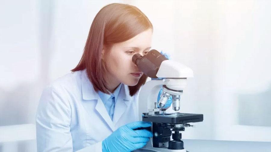 Crean ovarios artificiales para administrar terapia de reemplazo hormonal