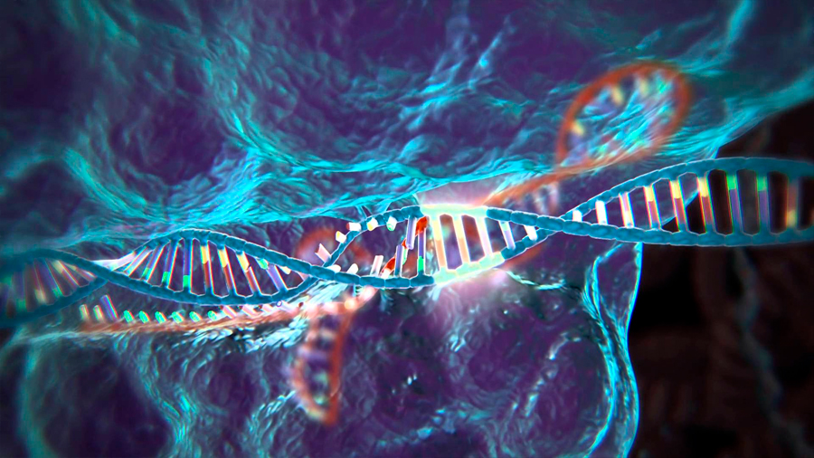 Una versión modificada de la técnica CRISPR permite tratar epigenéticamente varias enfermedades