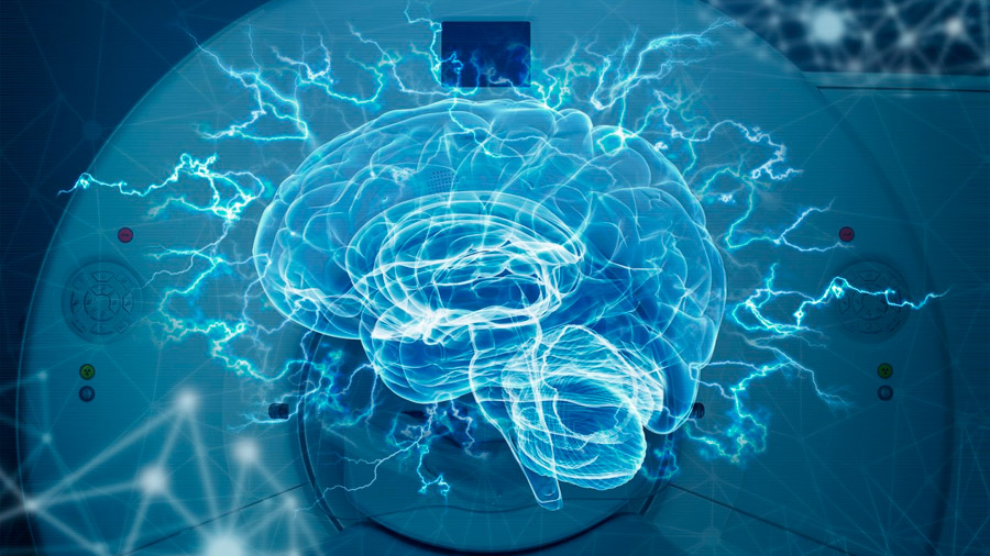 Imágenes del cerebro refutan una teoría de los años 60 sobre el dominio del lenguaje
