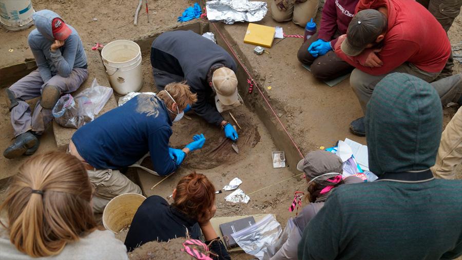 Secuencian genoma de fósil humano de hace 11 mil 500 años
