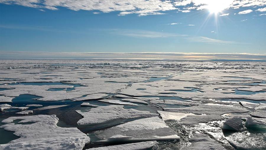 Sorprendentes evidencias de rápido cambio de clima en el Ártico