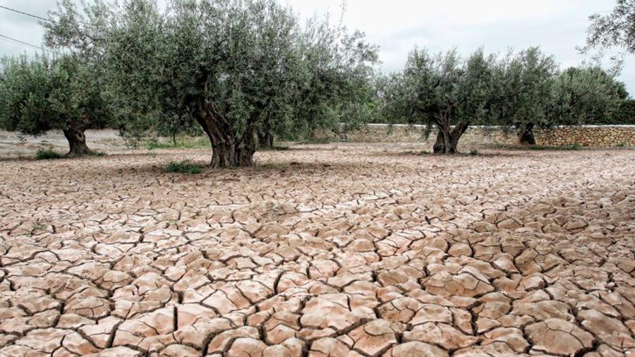 Un estudio predice que el mundo será un lugar mucho más árido con 2ºC más