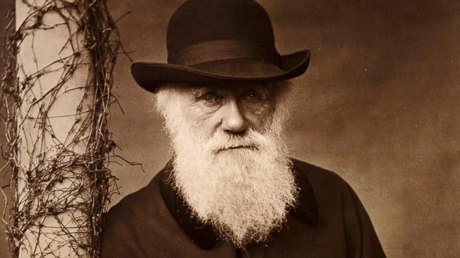 El día que Darwin quiso descubrir si el color del cabello afecta a la capacidad de las mujeres para encontrar pareja