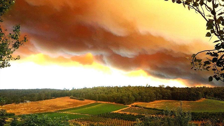 Las impresionantes imágenes de cielos naranja que dejaron los incendios en Australia