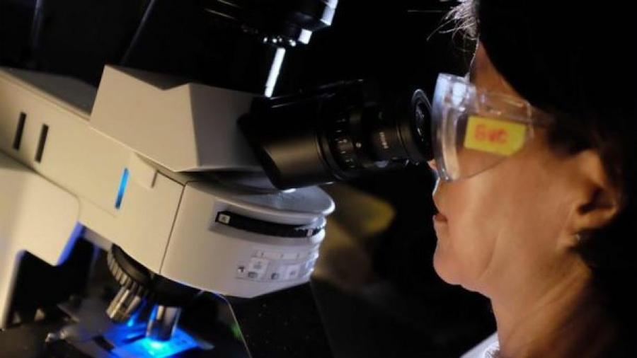 #EllasSonCSIC, una iniciativa para visibilizar el papel de la mujer en la ciencia