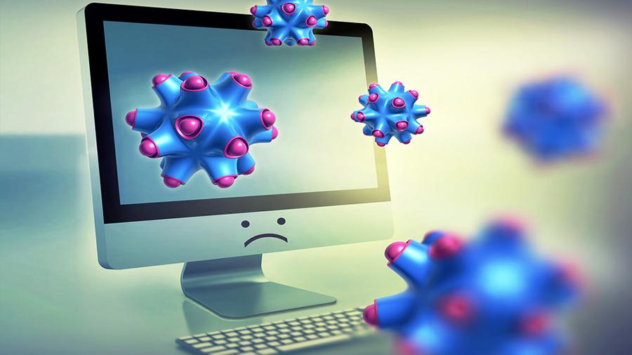 Crean software para clasificar organismos biológicos