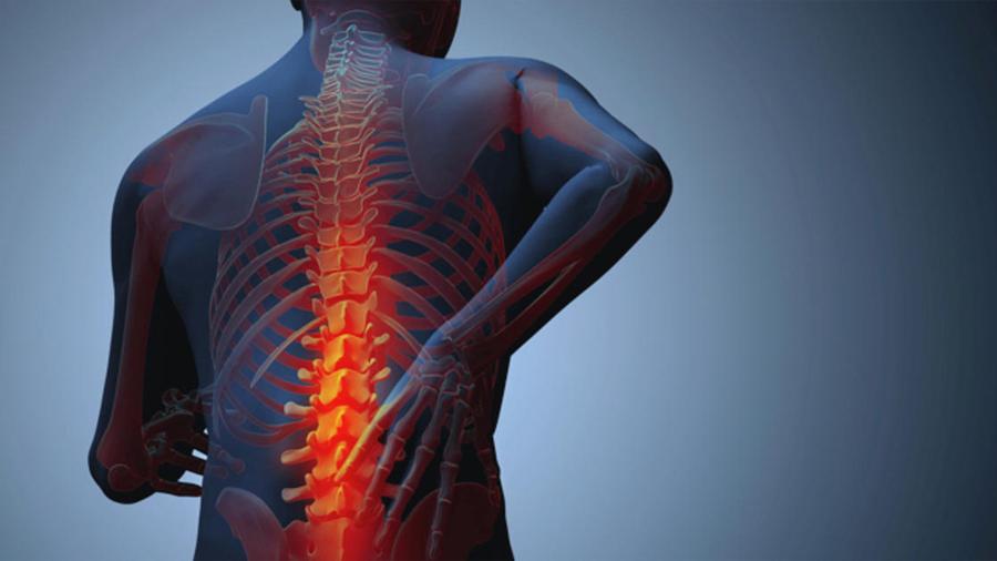 Diseñan una molécula 'señuelo' que bloquea el dolor en su lugar de origen