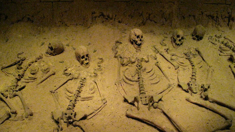 Las heces presentes en esqueletos antiguos permiten identificar los parásitos descritos en los primeros textos médicos