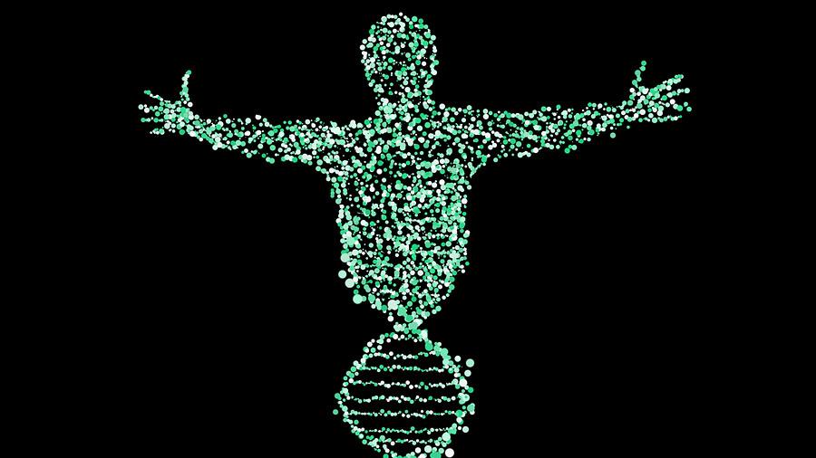 Reconstruyen el ADN de un esclavo fugado del siglo XVIII gracias a 800 parientes vivos