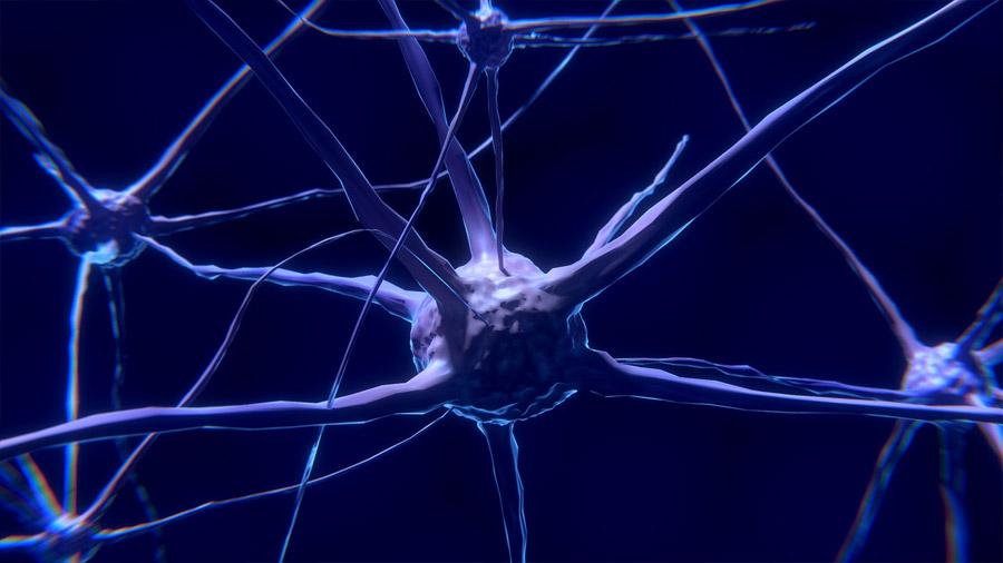 Los nanotubos de carbono pueden restaurar conexiones neuronales