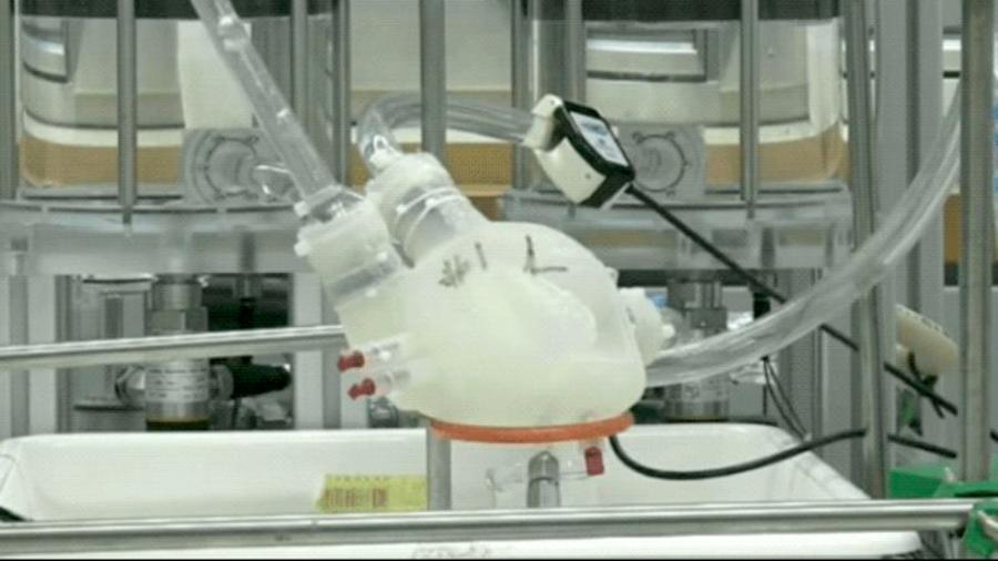 Científicos crean corazón impreso en 3D que late como uno real