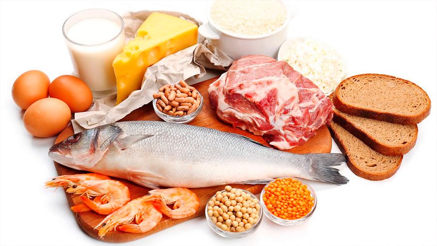 El consumo diario de 80 gramos de proteínas previene la discapacidad física en la tercera edad