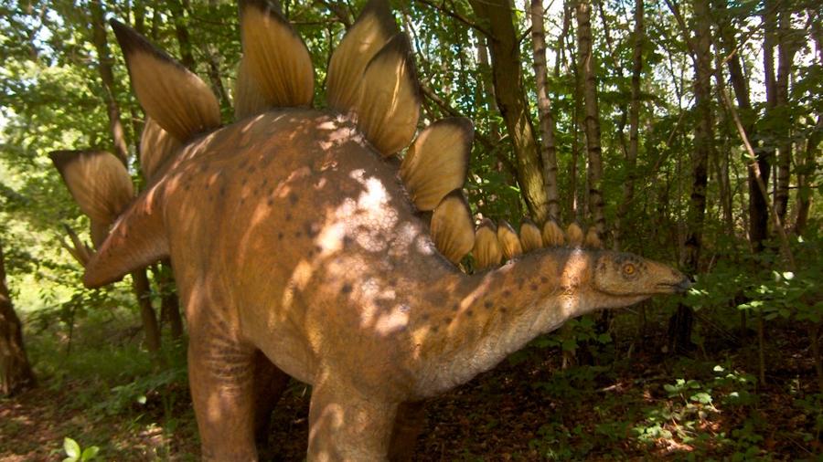 ¿Por qué los reptiles actuales no tienen púas en la cola?